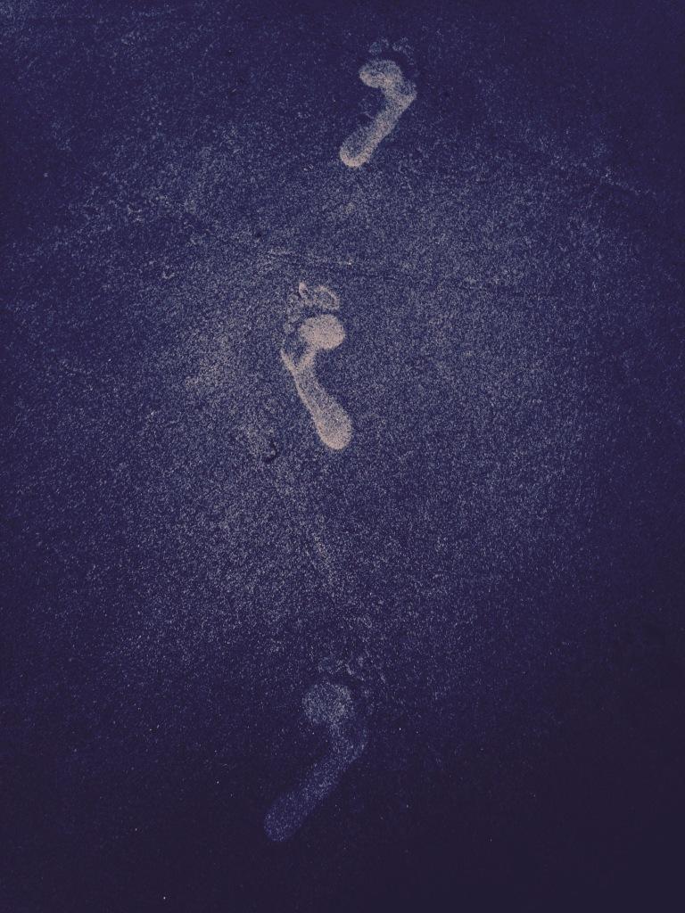Human Tracks--Donald Edmonds