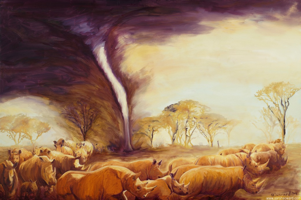 Tornado-of-Rhinos-sarah-soward